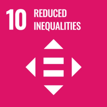 10_reduced_inequalities icon