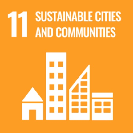 11_sustainable_cities icon