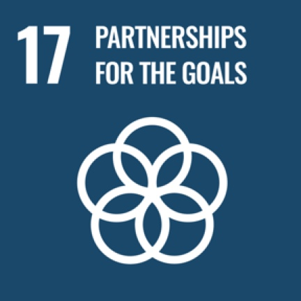 17_partnerships icon