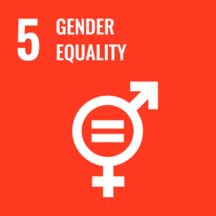 5_gender_equality icon